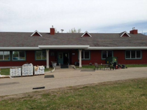 Global News story about the opening of the Be Brave Ranch